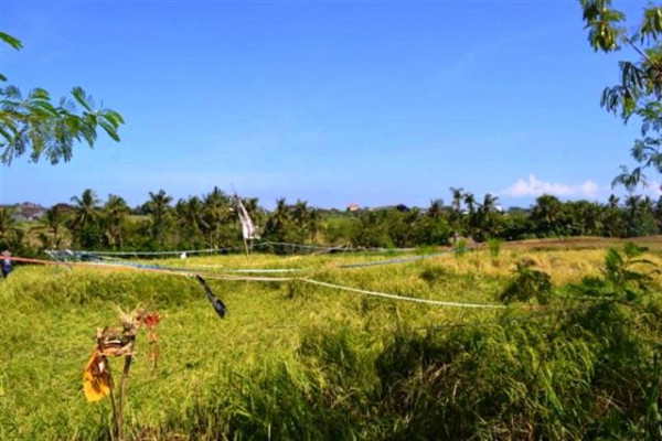 Land for sale in canggu Tumbak bayuh – TJCG034