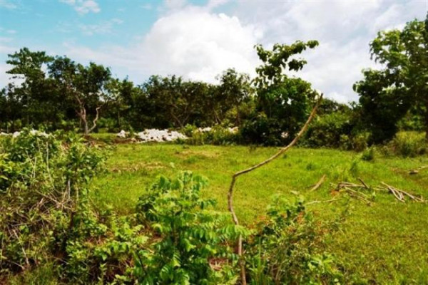 land for sale in jimbaran suitable for villa