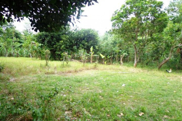 land for sale in Jimbaran 3 minute from main road – TJJI021