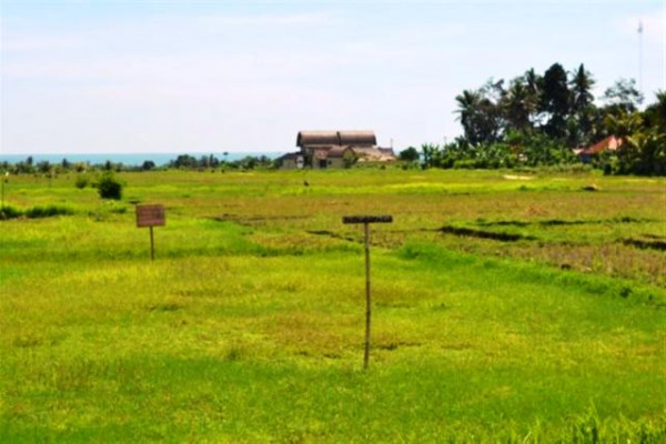 land for sale in tabanan view Kedungu beach – TJTB002