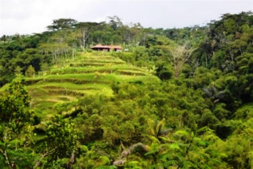 land for sale in Ubud featuring River and rice field view – TJUB033