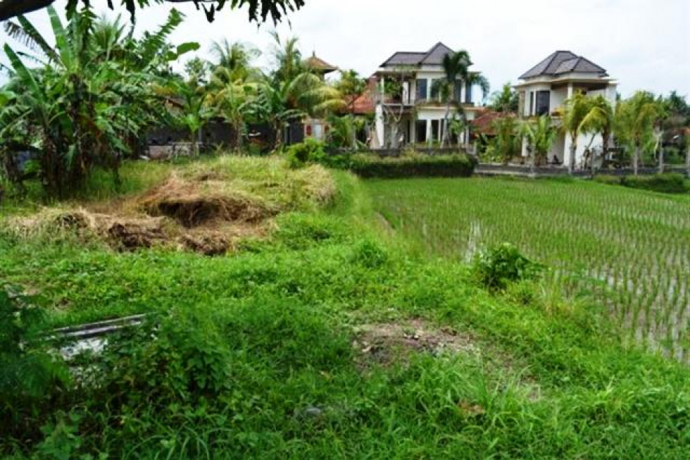 Land for sale in Ubud 10 are nice rice field view – TJUB051