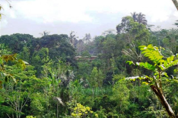 land for sale in Ubud Bali suitable for villa – TJUB096
