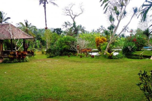 Land for sale in Ubud Payangan bali – TJUB101