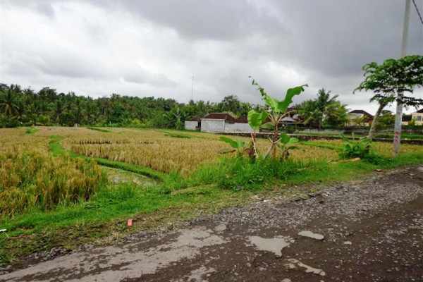 Land for sale in Ubud suitable for villa  – TJUB105