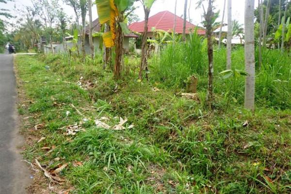 Land For Sale Near Ubud Center suitable for villa – TJUB090