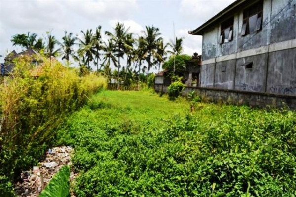 Land for sale in Ubud near Ubud Center, 6 are overlooking rice paddies – TSUB005