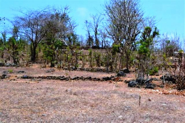 land for sale in jimbaran, cheap with good view – TJJI004