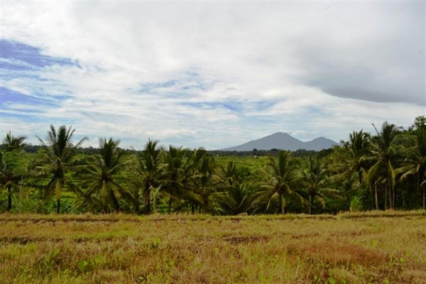 Land for Sale in Bedugul, Bali with Beautiful Lake View – TJBE002