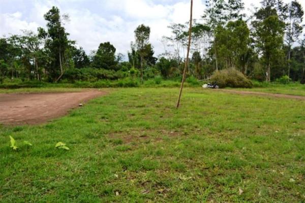 LAND FOR SALE IN TABANAN NEAR BEDUGUL – TJBE007