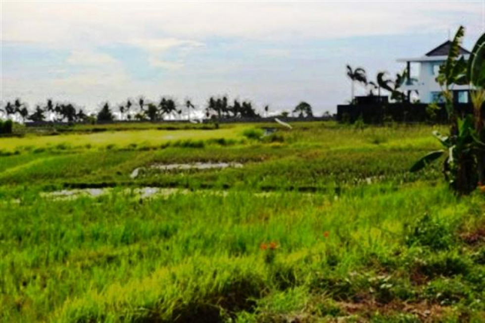 Land for sale in Canggu Kuta rice field view near the beach