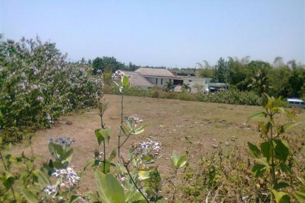 Land for sale in Pererenan Canggu Bali – TJCG060