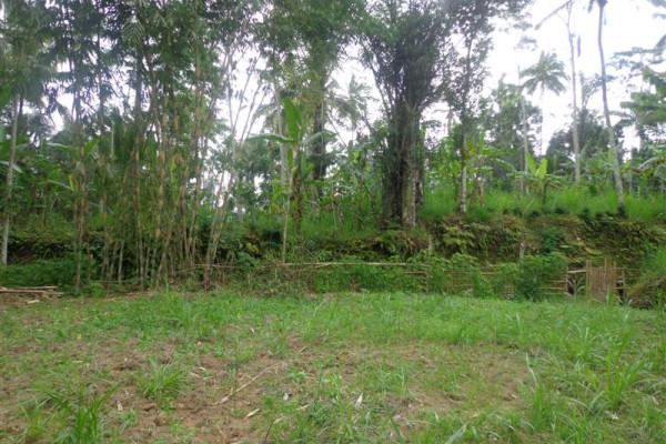 Land for sale in Ubud – TJUB118  aspect for villa