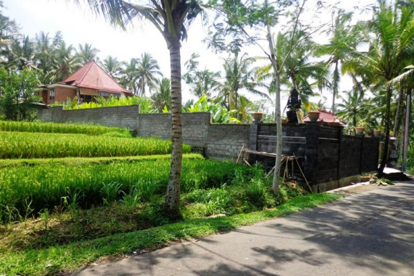 Roadside Land for sale in Ubud with rice fields view – TJUB124