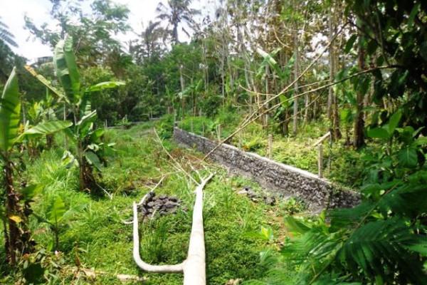 Land for sale in Tegalalang Ubud Near Bagus Jati Hotel – TJUB125