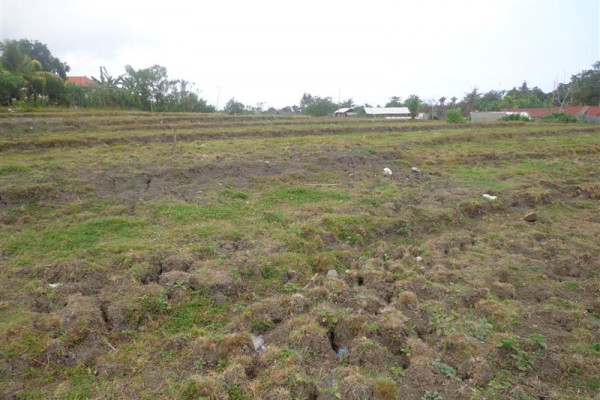 Strategic Land For sale In Kerobokan Bali – TJCG063
