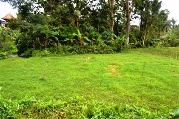 Land for sale in Ubud Sanggingan 30 ares close to Museum Neka – TJUB062