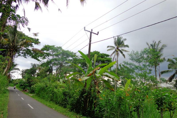 Land for sale in Ubud Tegalalang 2000 m2 by the roadside – TJUB147