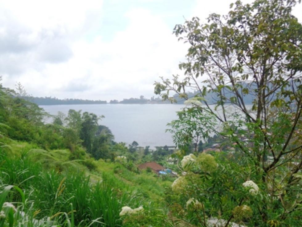 Land for sale in Bedugul Perfect for villa – TJBE023
