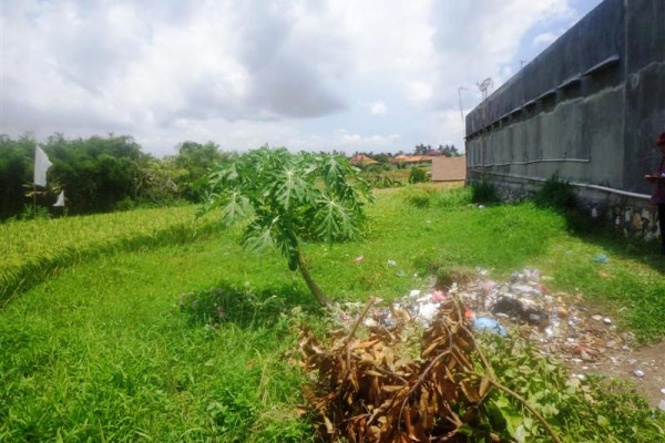 Plot of Land for sale in Canggu ready for villa – TJCG078