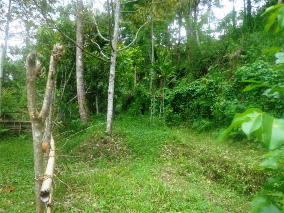 Land for sale in Ubud By the Roadside in Tampaksiring Ubud – TJUB153
