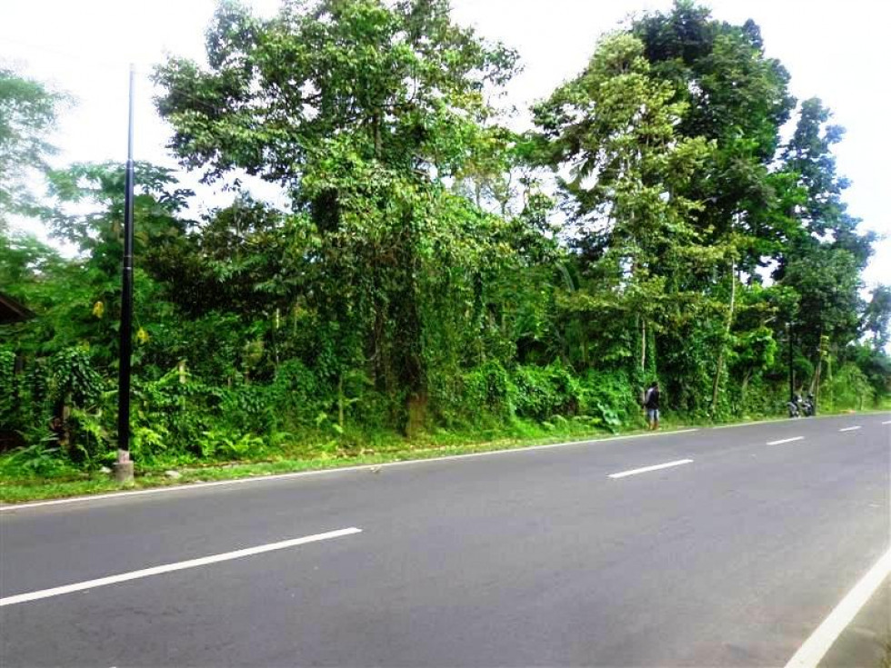 Land for sale in Bedugul Bali for good business opportunity – LBE030