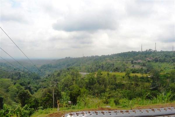 Prestige Land for sale in Bedugul Bali – LBE034