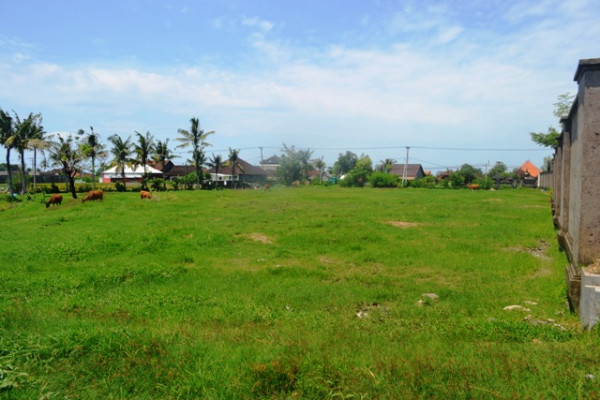 Land for sale in Canggu large enough for villa project – LCG084