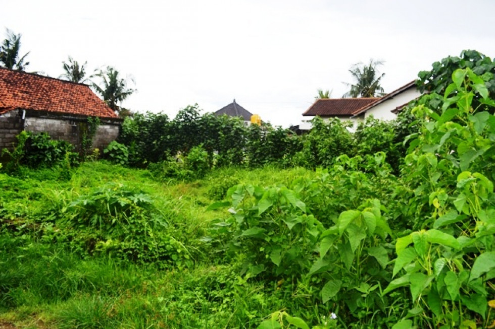 Land for sale in Canggu Bali 200 m2 ready for development – LCG083