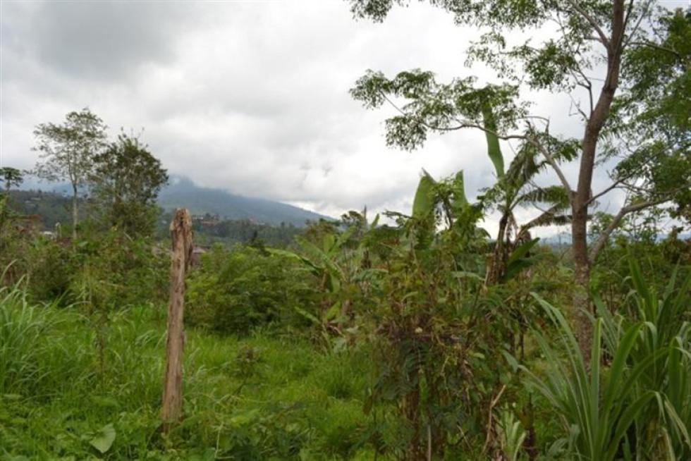 Land for sale in Bedugul Bali – TJBE012