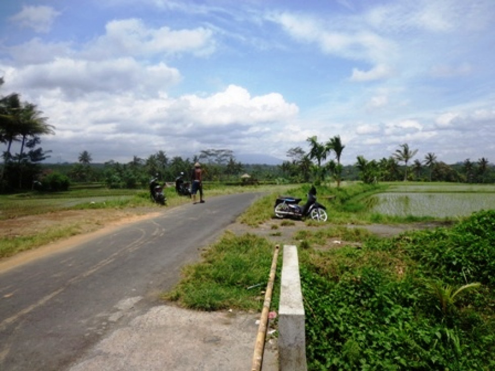 Land for sale in Ubud Bali first class development Land – LUB192