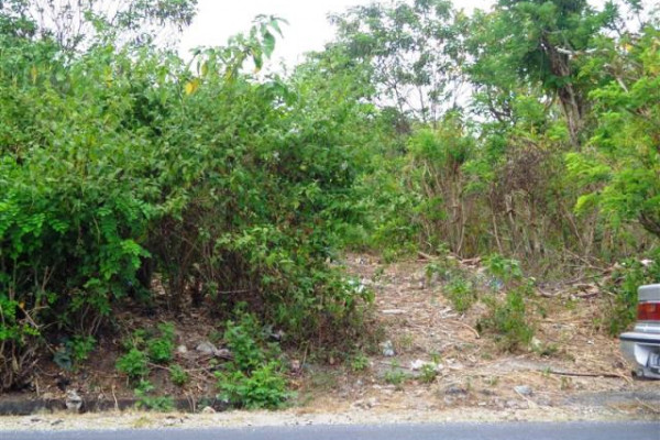Land for sale in Bali 25 Ares Beach view  in Jimbaran Ungasan