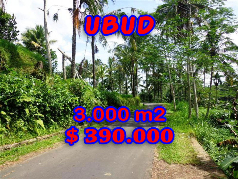 Land for sale in Ubud 3.000 m2 Stunning Rice Paddy and River View – TJUB231