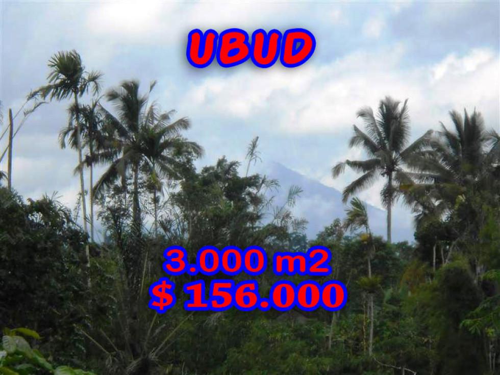 Land for sale in Ubud Bali 3.000 sqm in Ubud Payangan – TJUB201