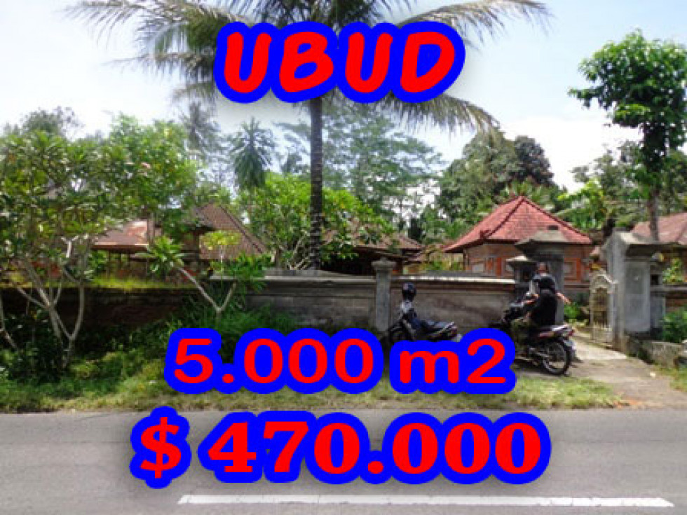 Land in Ubud for sale 5,000 sqm Stunning view – TJUB191E