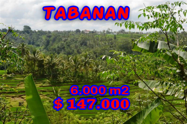 Land for sale in Tabanan 60 Ares in with Mountain View – TJTB040