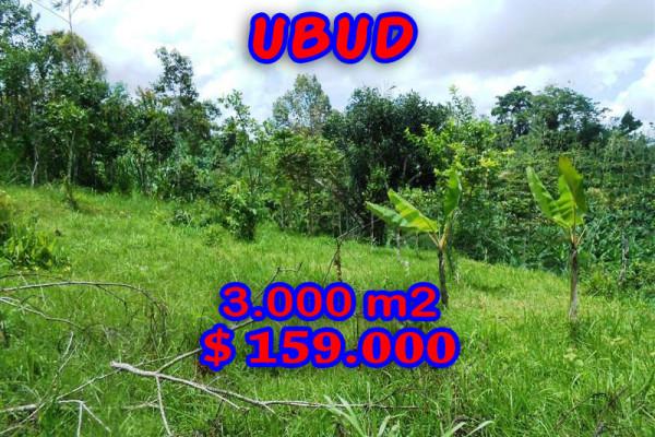 Land for sale in Ubud Bali 3.000 sqm in Ubud Payangan – TJUB200