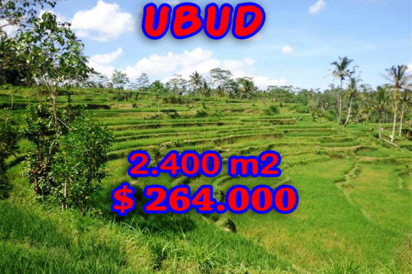 Land for sale in Ubud Bali 24 Ares in Ubud Tampak siring