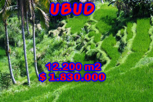 Land for sale in Ubud River Valley and Paddy fields in Ubud Tampak siring Bali