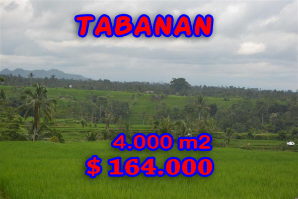 Land in Tabanan for sale 40 Ares with montain and rice paddy view – TJTB042