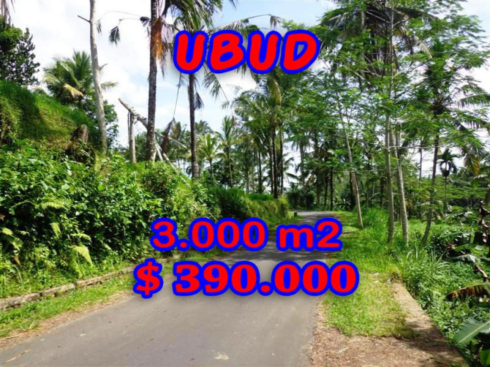 Land for sale in Bali 2.400 sqm Rice Fields in Ubud Tampak siring – TJUB223