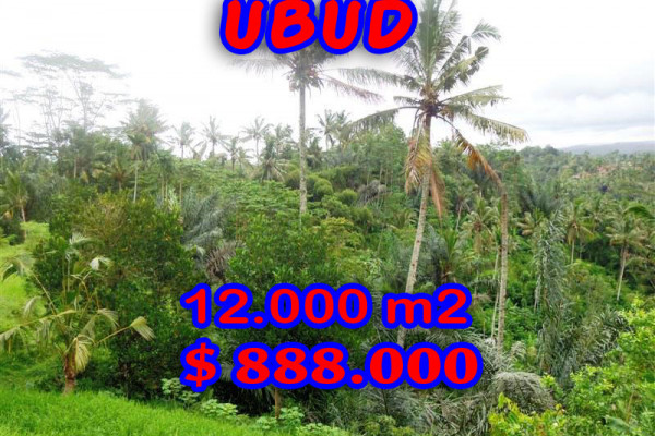 Land for sale in Ubud Bali 120 Ares with by the river  – TJUB293