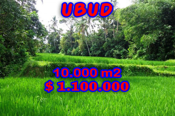 Exotic 10.000 m2 Land for sale in Ubud Bali