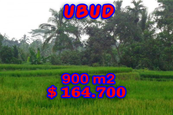 Land in Ubud for sale 900 m2 in Ubud Tegalalang – TJUB204