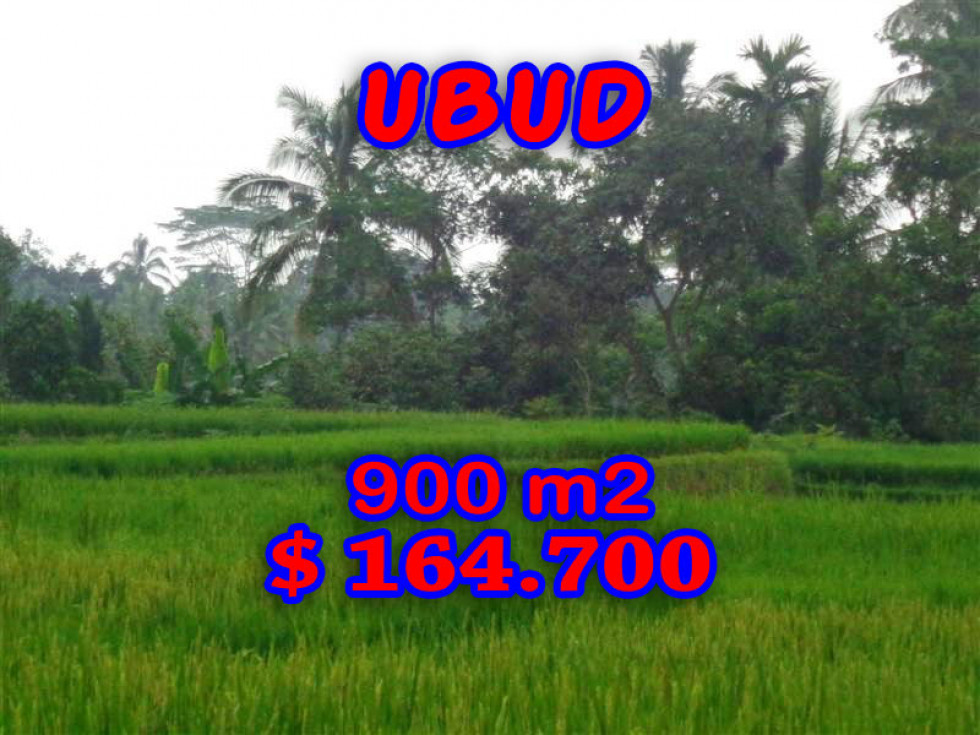 Land in Ubud for sale 900 m2 in Ubud Tegalalang – TJUB204
