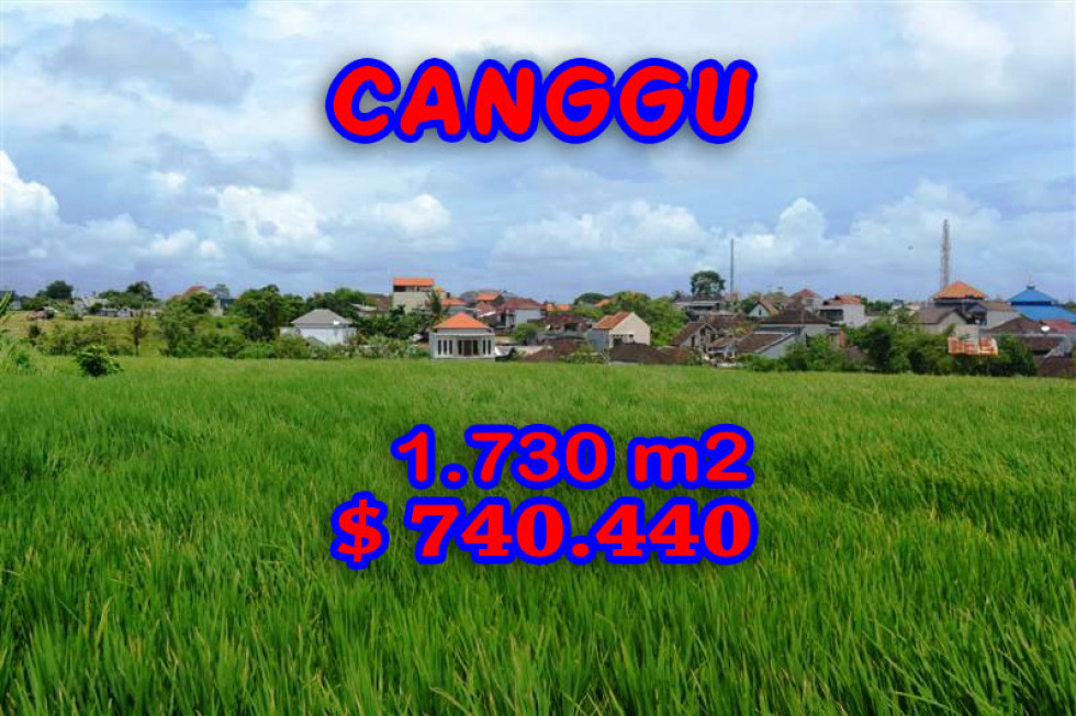 Land in Canggu for sale 1.730 sqm with Rice fields and river view – TJCG095E