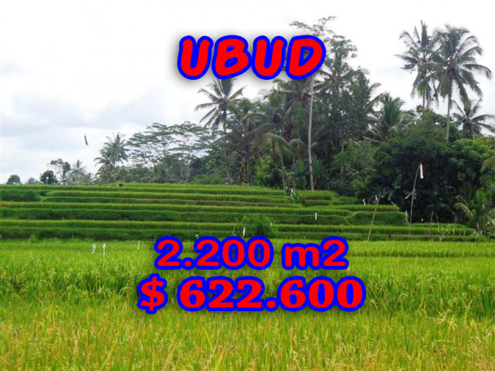 Land for sale in Ubud 2.200 m2 Close to Ubud Center – TJUB206