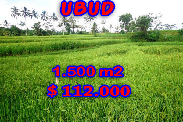 Exceptional Property in Bali, Land in Ubud Bali for sale – 1.500 m2 @ $ 74