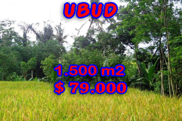 Magnificent Property for sale in Bali, land for sale in Ubud Bali  – 1.500 sqm @ $ 52