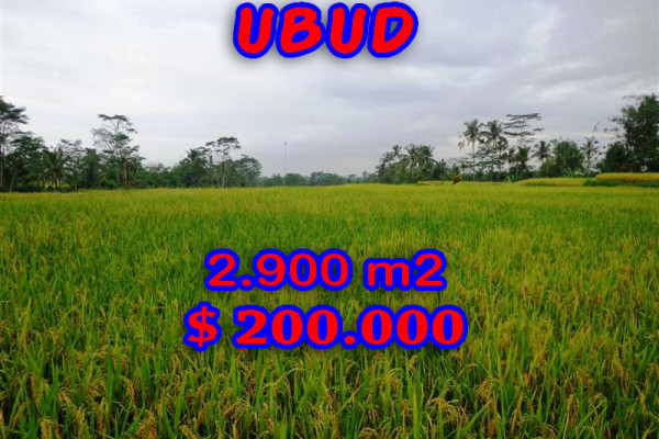 Land for sale in Ubud Tegalalang, Magnificent Property in Bali  – 2.900 sqm @ $ 69